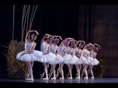 View the National Ballet's Swan Lake Corps de Ballet: Dancing and Breathing as One video featuring Artists of the Ballet in Swan Lake.