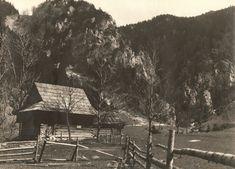 Podžiar - stará fotografia | Terchová kedysi Old Photography, Flora, Wattpad, Cabin, Retro, House Styles, Life, Cabins, Plants