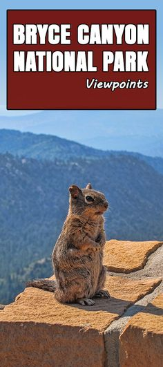 See the different viewpoints at Bryce Canyon National Park.