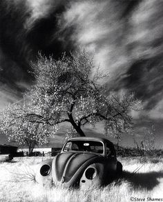 Lost - moody black and white photograph volkswagen vw bug in eerie landscape Volkswagen, Abandoned Cars, Abandoned Places, Van Vw, Beverly Hills Cars, Infrared Photography, Vw Vintage, American Classic Cars, Vw Bugs