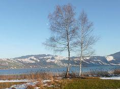 Ägerisee in Switzerland Switzerland, Mountains, Places, Nature, Travel, North Sea, Travel Report, Travel Advice, Viajes