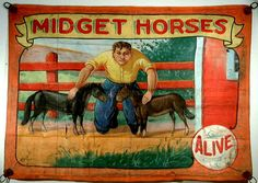 """Two of my favorite things! Sideshows and miniature horses!  I love it that they specify """"Alive""""."""