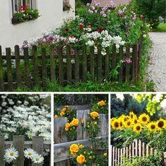 Vysněná zahrada: Půvabné předzahrádky
