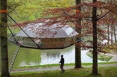 Dom'Up: Suspended Treehouse Cabin