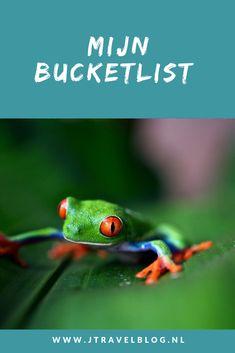 Ook ik heb een bucklist van bestemmingen die ik nog graag zou willen zien. Welke dat zijn lees je in deze blog. Lees je mee? #bucketlist #jtravel #jtravelblog