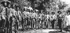 Foto na História: LAMPIÃO E PARTE DE SEU GRUPO - I