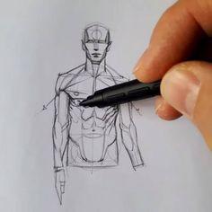 How to draw basic human anatomy by Ferhat Edizkan Art instagram.com/edizkan  veri-art.net ...