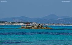 2 Robinsons- Mediterránea Pitiusa la Naviera de Formentera