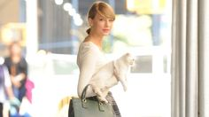 Try out Taylor's new look. It's called -- 'cat draped lazily over forearm.'