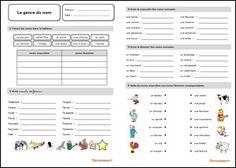 Fiche d'exercices sur le genre du nom au format PDF