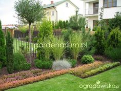 http://assets2.ogrodowisko.pl/uploads/p/55/555912/original.jpg