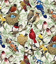Beautiful Birds by Elizabeth Studio by the yard. Oriole, Robin, Blue Jay, Cardinal, Chickadee, Wax Wing and more.