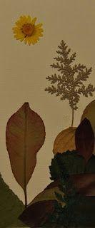Es tiempo de aprovechar y recoger las hojas con esos encantadores tonos entre amarillos y rojizos, típicos del otoño. Y para que recogerlas...