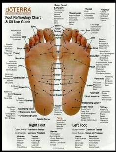 Foot reflexology chart and oil use guide.