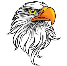 Cool Eagle Head Tattoo Design - Incredible simple design of an eagle's head. Eagle Art, Wood Burning Patterns, Pyrography, Line Drawing, Rock Art, Wood Carving, Eagles, Painted Rocks, Vector Art
