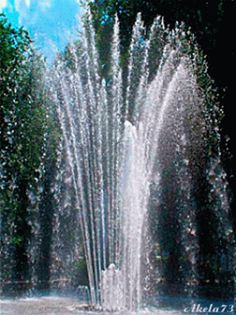 The perfect Fountain Water Garden Animated GIF for your conversation. Discover and Share the best GIFs on Tenor.