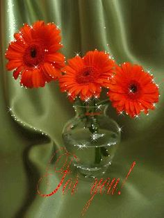 Яркие герберы Beautiful Gif, Beautiful Roses, Coral Orange, Gifs, Fountain, Glass Vase, Peach, Butterfly, Animation