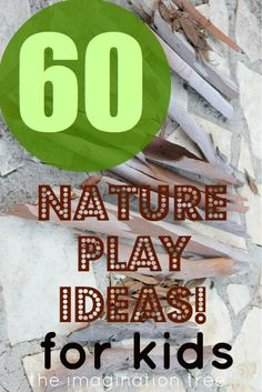 60 Ideas for using natural objects during play