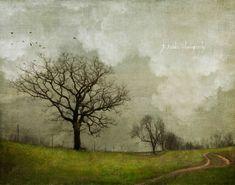 Heiden-Jamie-Work-2-600x472 Landscape Photos, Landscape Art, Oil Painting Trees, Fashion Painting, Mini Paintings, Painting Patterns, Painting Styles, Photo Tree, Modern Artists
