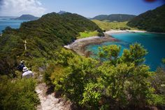 Awe-inspiring sceneries are awaiting you - Northland Discovery hiking tour, New Zealand