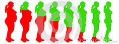 Vista lateral de pérdida de peso.