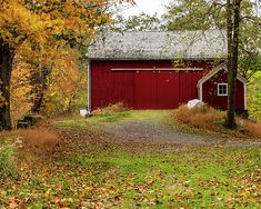 Limited Time Promotion: Historic Places - Corwin Farm Barn Stretched Canvas Print by Amelia Pearn Image Photography, Macro Photography, Landscape Photography, Farm Barn, Rustic Bathrooms, Red Barns, Underwater Photography, Stretched Canvas Prints, Beautiful Artwork