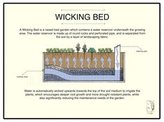 Wicking beds