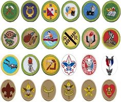 cupcake+merit+badges+eagle+scout+badge+boy scouts+edible+images+2
