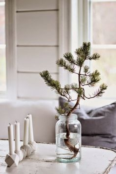 Hello friends.  I am changing things up a bit on the blog today.  Instead of another furniture makeover, this post is about decorating for the holidays and what is inspiring me for holiday decor.  …