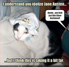 Jane Austen kitty :3