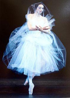 Diana Vishneva - Photo Gene Schiavone