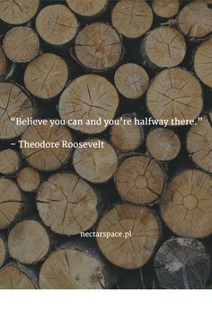 """Believe you can and you're halfway there.""   – Theodore Roosevelt"