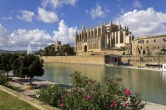 Private Tour: Palma de Mallorca Walk plus...