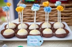 A Colorful Fiesta Birthday Party cakepops