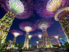 Singapore! One of the Top 10 Most Visited Cities of 2015. How fairyland like.