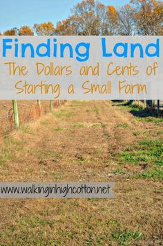 10 Thoughts on finding land for a small farm (series part 2 Dollars and Cents of Starting a Small Farm) from Walking in High Cotton