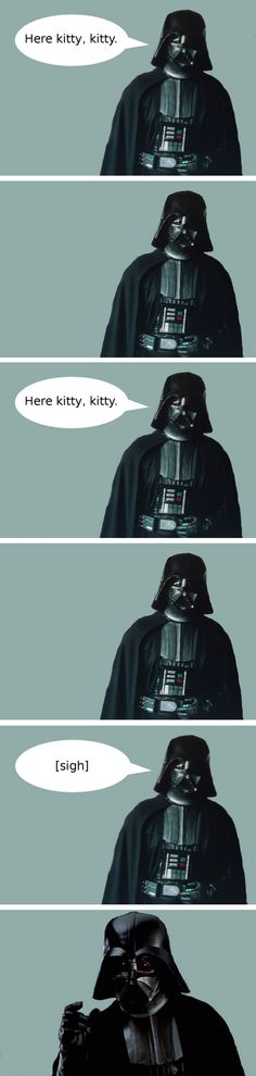 Darth Vader And His Cat-this is the funniest gif I've seen in a long time!!!!