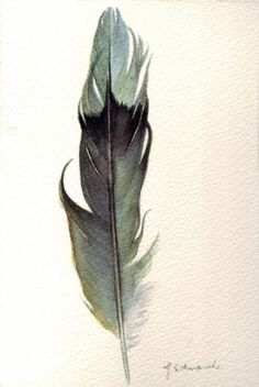 featherveins