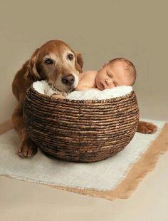 Я всегда буду рядом| Дети Фотосессия| Дети Развитие|  Дети Идея| Домашние животные Фото