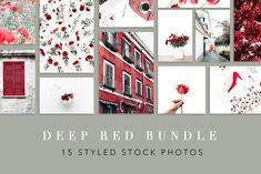 Deep Red Bundle of 15 Styled Stock Photos Social Media Template, Social Media Design, Creative Market Fonts, Website Themes, Business Card Logo, Wordpress Theme, Free Design, Gallery Wall, Stock Photos