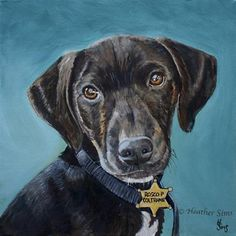 """Rosco P Coltrane"" - Original Fine Art for Sale - © Heather Sims"
