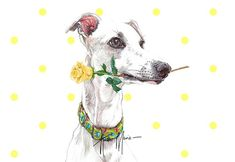 Whippet Birthday Card from http://www.twowoofs.co.uk/