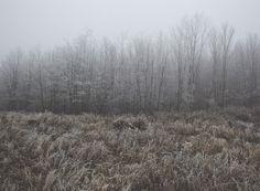 Journeys: December by csabi kalotas, via Behance