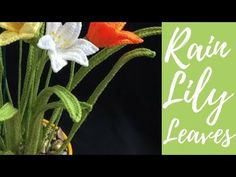 How to Crochet Rain Lily Leaves Crochet Leaves, Crochet Doilies, Crochet Flowers, Crochet Stitches, Crochet Patterns, Rain Lily, Crochet Instructions, Crochet Cardigan, Crochet Accessories
