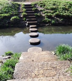 The Influence of a Writers' Conference – Stepping Stones to Growth by Joylene M. Feeling Sorry For Yourself, How Are You Feeling, Writers Conference, Injury Claims, Adhd And Autism, Autism Education, Thought For Today, Making Life Easier, Spectrum Disorder