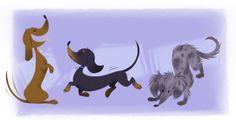 Doxie doodles. #dog #dachshund #illustration