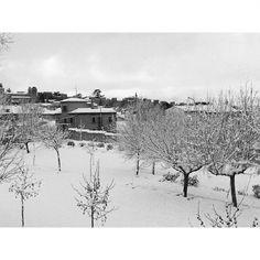 Aunque hoy hace muy buena temperatura y ya se está quitando la #nieve, me quedo con esta imagen del otro día desde la ofi. Snow, Outdoor, Colorful, December, Be Nice, Naturaleza, Deserts, Photos, Outdoors