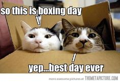 Boxing Day | 29 December, 2012 in Funny , Pictures | Comment