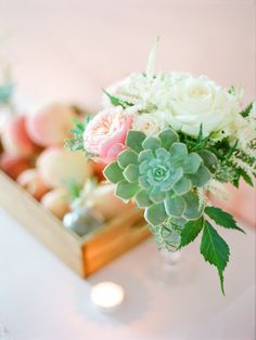 Don't you just love the succulents in this floral centrepiece?  Vintage peach inspired shoot   Florals by JF Floral Couture, Styling by Simply Peachy, Photo by Isa Photography
