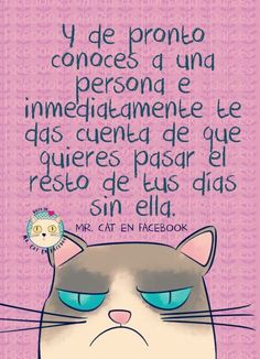 Cat humor Frases Instagram, Funny Memes, Jokes, Funny Phrases, Spanish Memes, Cat Quotes, Grumpy Cat, Some Words, Funny People